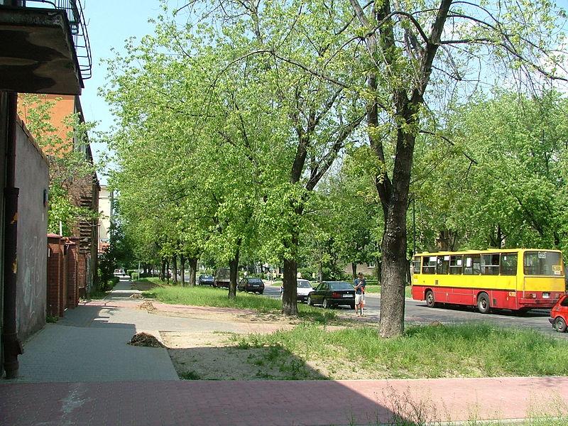 Warsaw szaserow