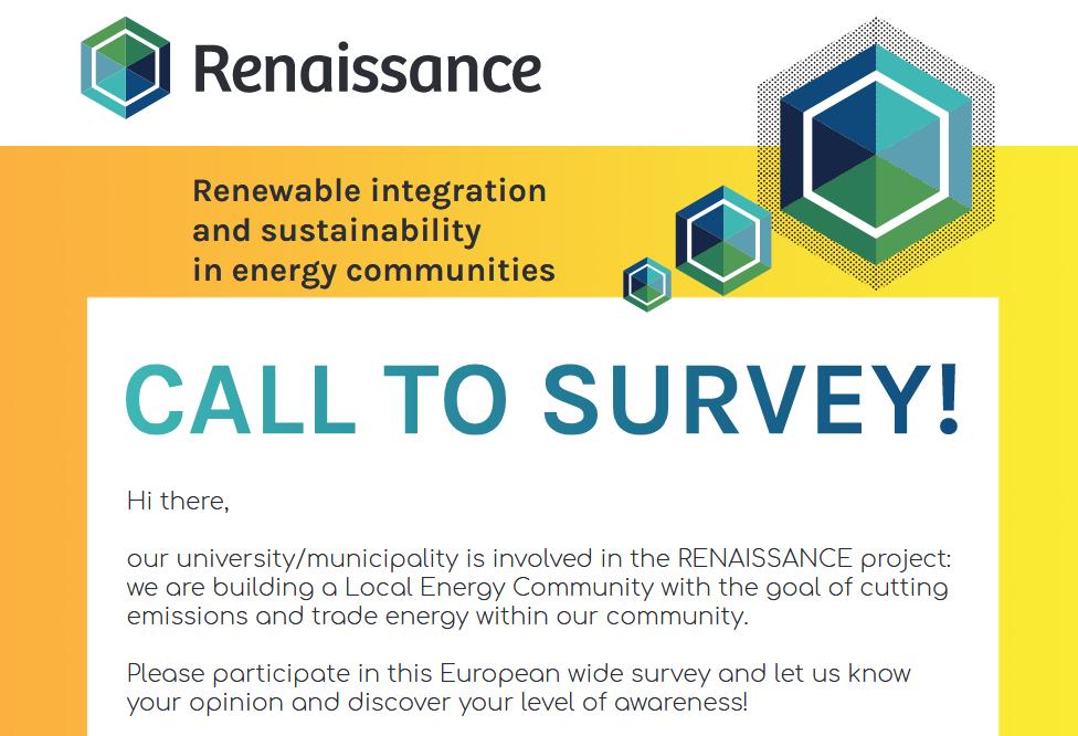 Screenshot 2020 12 03 REN survey poster A4 cmyk eng pdf(1)